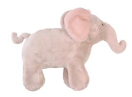 Elephant Ely