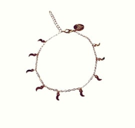 Shining Moon Gold anklet