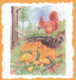 Eekhoorn in het bos, Decorvloei