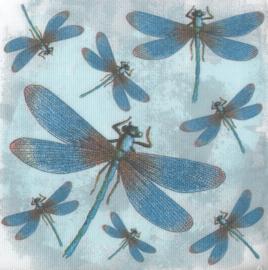 Libelle, XL servet