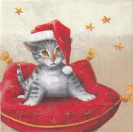 Santa Cat, servet