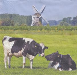Hollandse Weide, servet