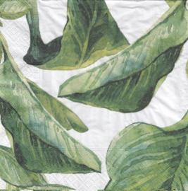 Grote bladeren, servet