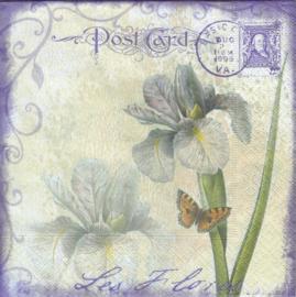 Iris Flower, servet