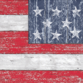 America, servet