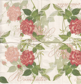 Classic Rose, zakdoekje