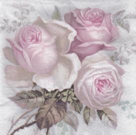 Big rose, servet