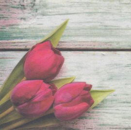 Tulips, XL servet