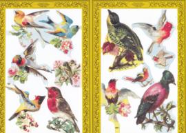 Vogels, poëzieplaatje Golden serie