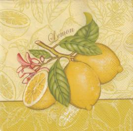 Lemon, servet