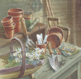 Daisies in Garden Shed, servet