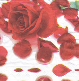 Love roses, servet
