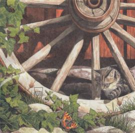 Cat on a old wheel, servet