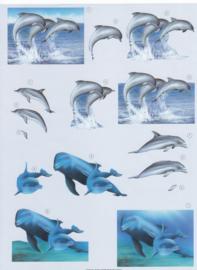 Dolfijnen, 3D knipvel
