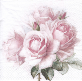 Pink roses, servet