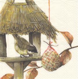 Birdhouse, servet