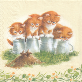 Four Kittens, servet