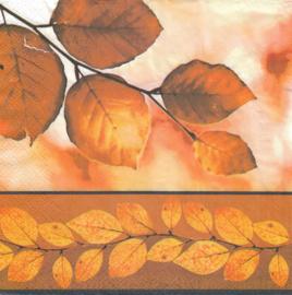 Herfst bladeren, servet