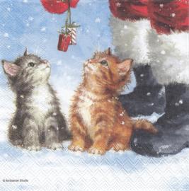 Two small presents, servet