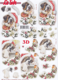 Kerst Sint Bernard, 3d stansvel Le Suh