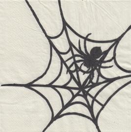 Spider, servet