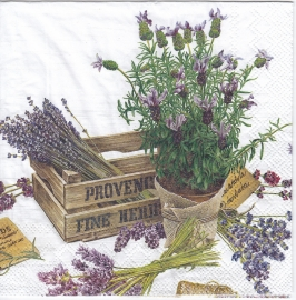 The flower of Provence, servet