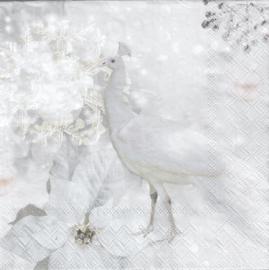 White Peacock, servet witte Pauw