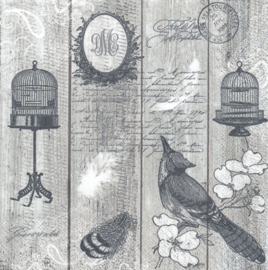 Birds & Cages, servet