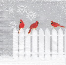 Snowfall Cardinals, servet