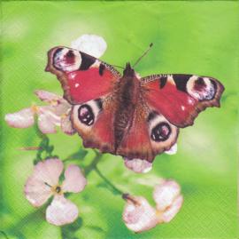 Vlinders, servet