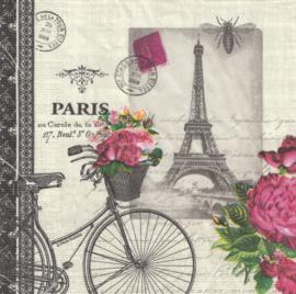 Vélo Parisien, servet