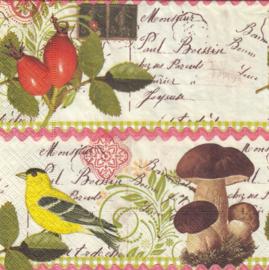 Botanical Postcard, servet