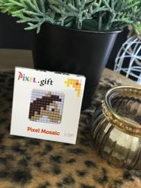 Pixel 'PAARD'