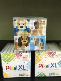 Pixel 'HONDEN'