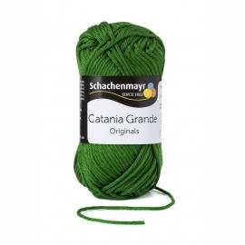 Catania Grande Olijf 03392