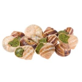 Escargots- zak (48 stuks)