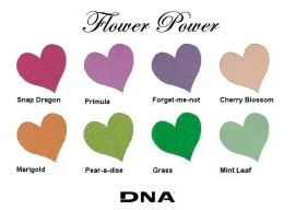DNA Color Powder