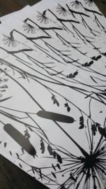 Inpakset - 14-delig - Grow & Grasses