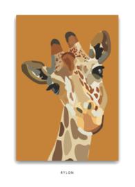Kaart - Giraffe