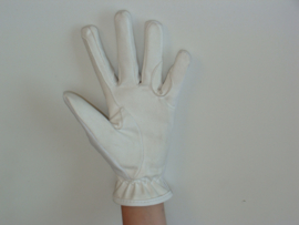 HB 1714 Washable Gloves