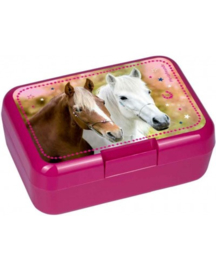 Paardenvriend lunch box