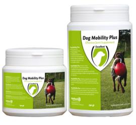 Dog Mobility Plus