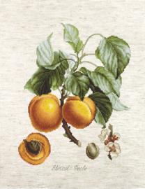 Borduurpakket Abricot-Peche - Luca-S    ls-ba22450