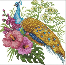 Cross Stitch / Peacock
