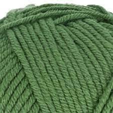 Scheepjes Chunky Monkey / Groen / 1824