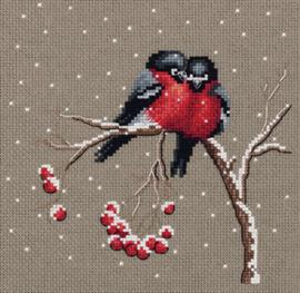 Vogels Winter - PANNA