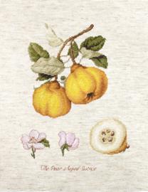 Borduurpakket The Pear shaped Quince - Luca-S    ls-ba22430