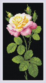 Diamond Mosaic Wonderful Rose - RIOLIS    ri-am0024