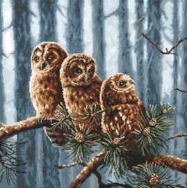 Borduurpakket Owls Family - Leti Stitch    leti-0946