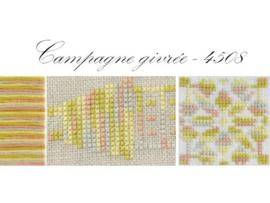 DMC Coloris - 4508 / Campagne givrée
